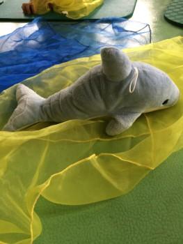 Der kleine Delfin ist mit einer großen Welle an den Strand gespült worden