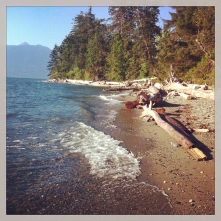 Fundstücke am Meer